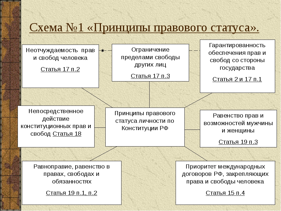 Реализация принципов правового статуса личности
