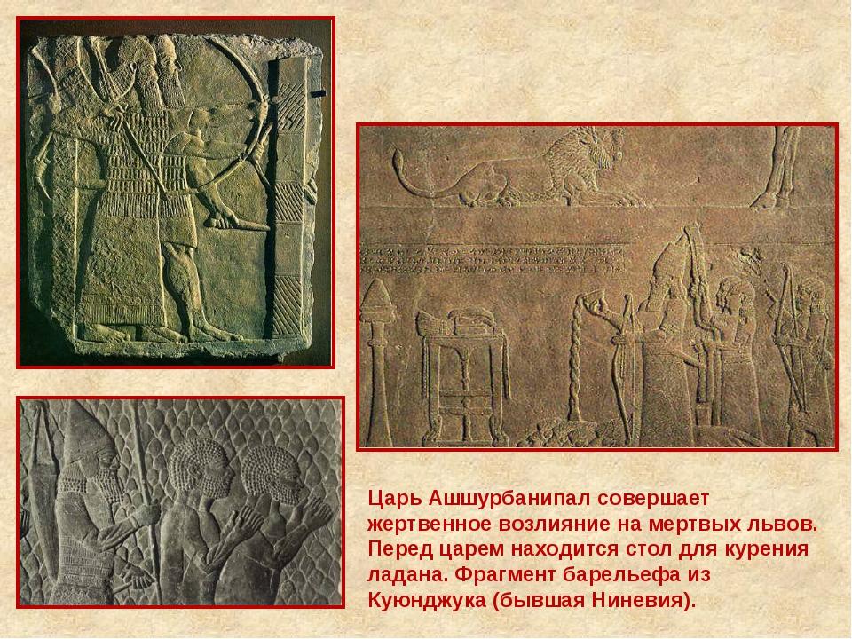 Царь Ашшурбанипал совершает жертвенное возлияние на мертвых львов. Перед царе...
