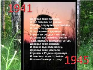Деревья тоже воевали И нас спасали от войны: Стволы под пули подставляли И ги