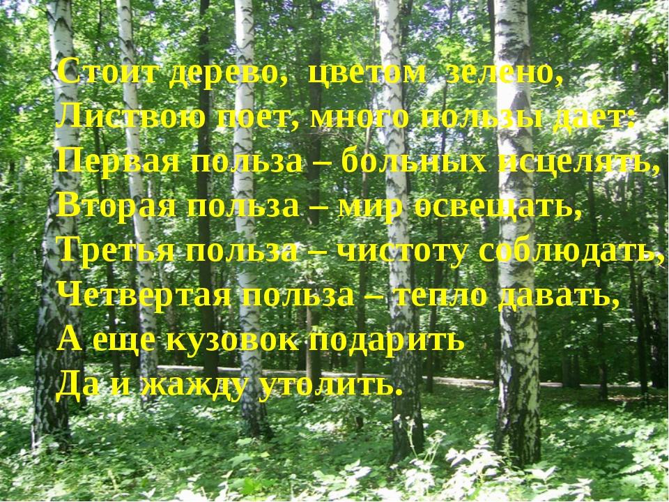 Стоит дерево, цветом зелено, Листвою поет, много пользы дает: Первая польза –...
