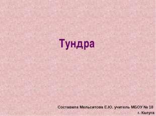 Тундра Составила Мельситова Е.Ю. учитель МБОУ № 18 г. Калуга