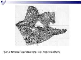 Карта с. Велижаны Нижнетавдинского района Тюменской области.