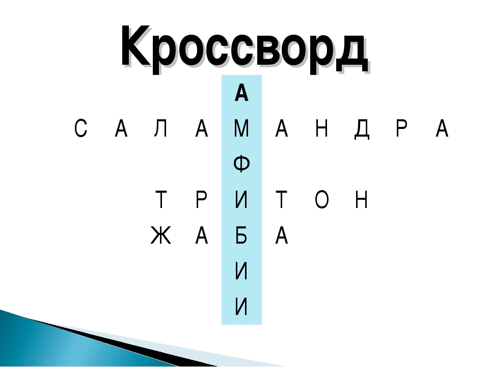 Кроссворд А САЛАМАНДРА Ф ТРИТОН ЖАБА...