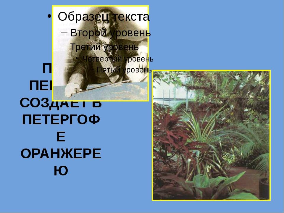 ПЕТР ПЕРВЫЙ СОЗДАЕТ В ПЕТЕРГОФЕ ОРАНЖЕРЕЮ