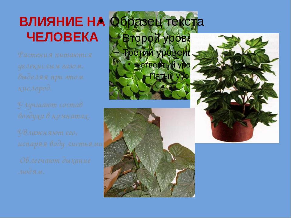 . ВЛИЯНИЕ НА ЧЕЛОВЕКА Растения питаются углекислым газом, выделяя при этом ки...
