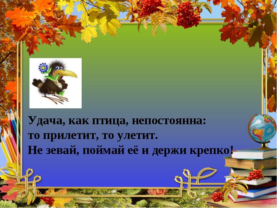 Удача, как птица, непостоянна: то прилетит, то улетит. Не зевай, поймай её и...