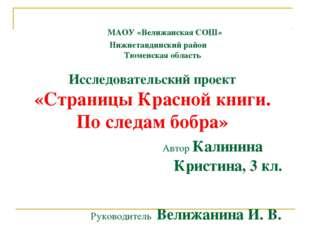 МАОУ «Велижанская СОШ» Нижнетавдинский район Тюменская область Исследователь