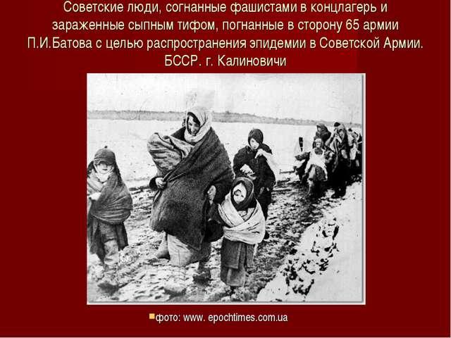 Советские люди, согнанные фашистами в концлагерь и зараженные сыпным тифом, п...