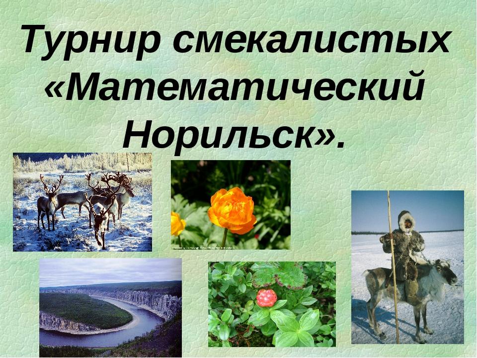 Турнир смекалистых «Математический Норильск».