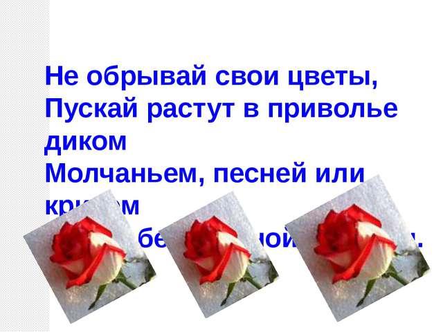 Не обрывай свои цветы, Пускай растут в приволье диком Молчаньем, песней или к...