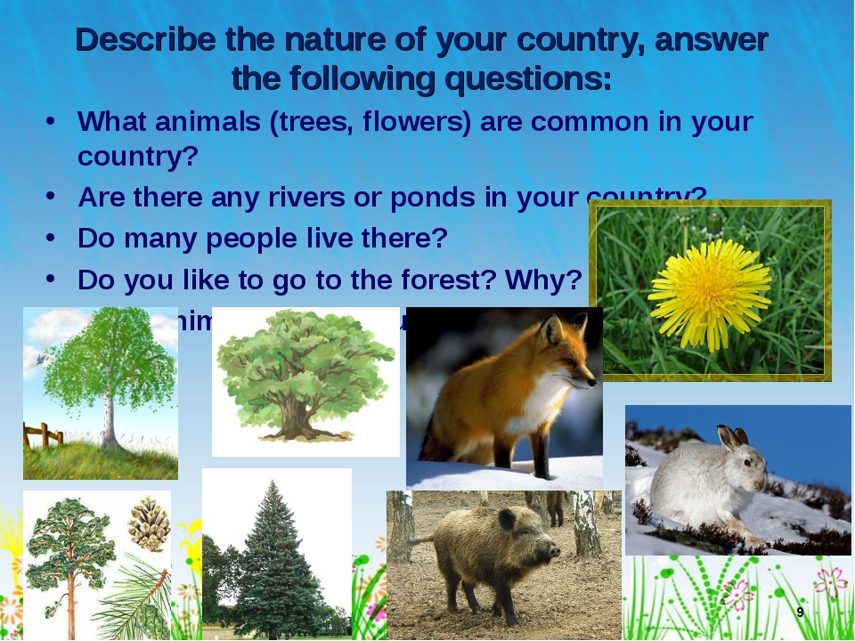 Describe the nature of your country, answer the following questions: What ani...