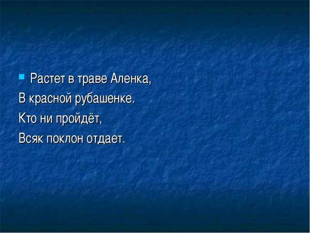 Растет в траве Аленка, В красной рубашенке. Кто ни пройдёт, Всяк поклон отдает.
