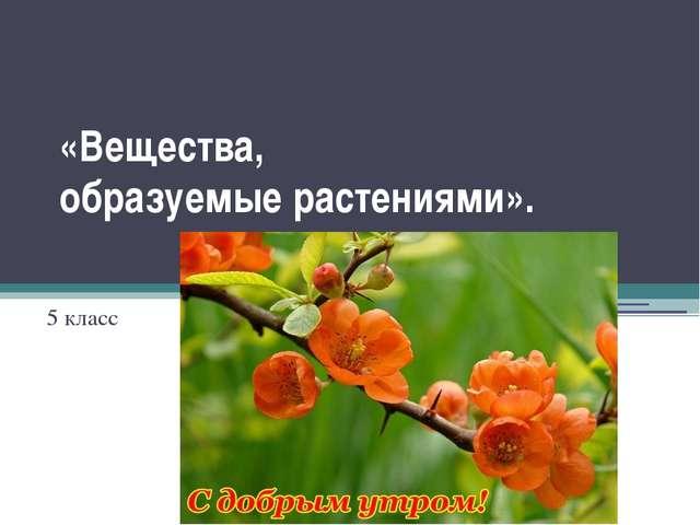 «Вещества, образуемые растениями». 5 класс