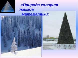 «Природа говорит языком математики: