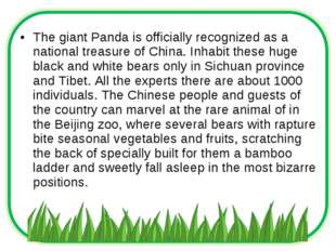 The giant Panda is officially recognized as a national treasure of China. Inh