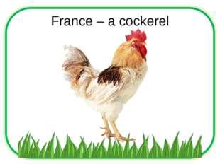 France – a cockerel
