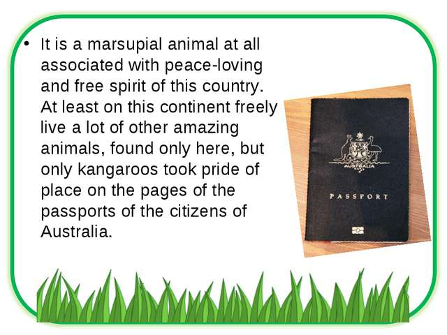 It is a marsupial animal at all associated with peace-loving and free spirit...