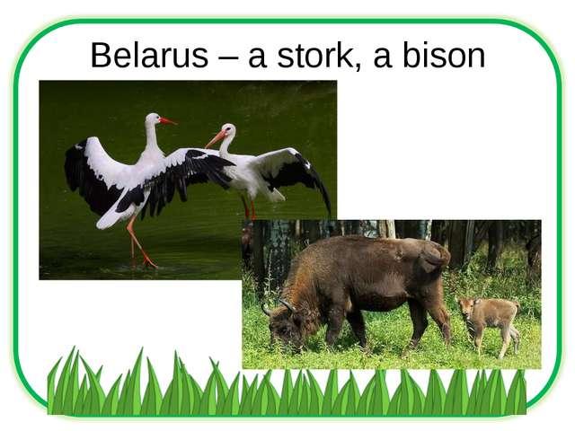 Belarus – a stork, a bison