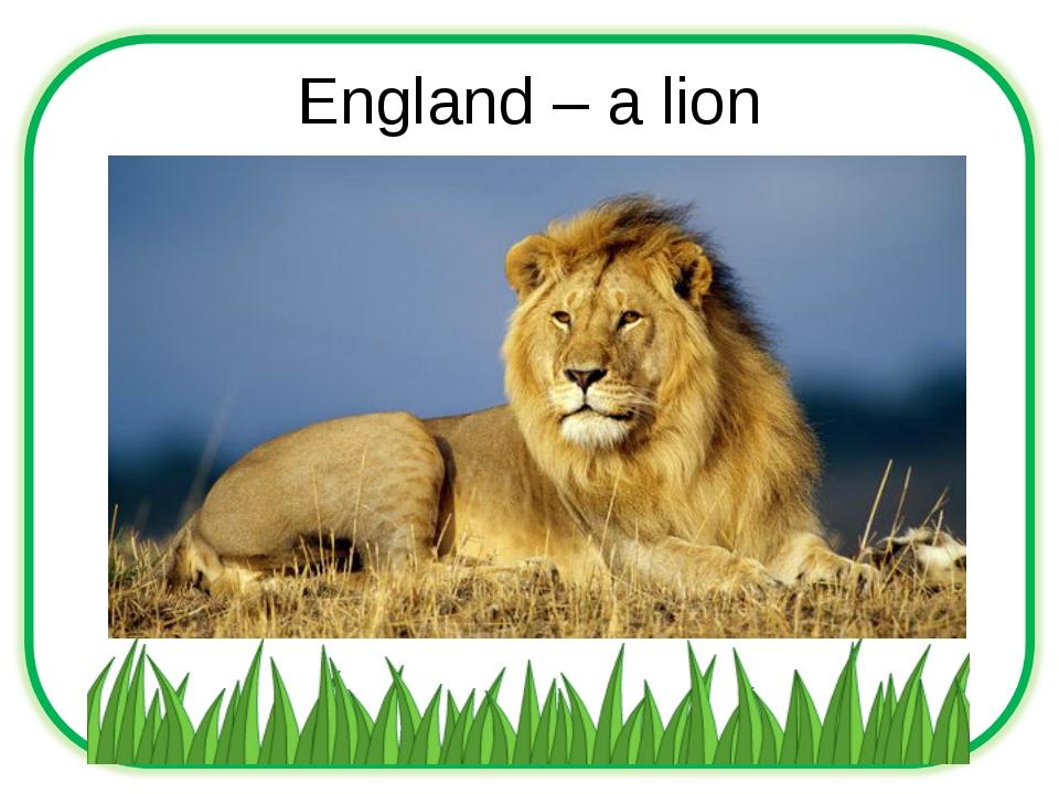 England – a lion