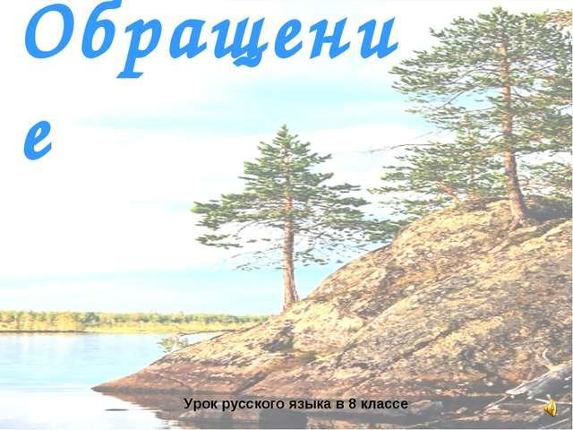 Обращение Урок русского языка в 8 классе