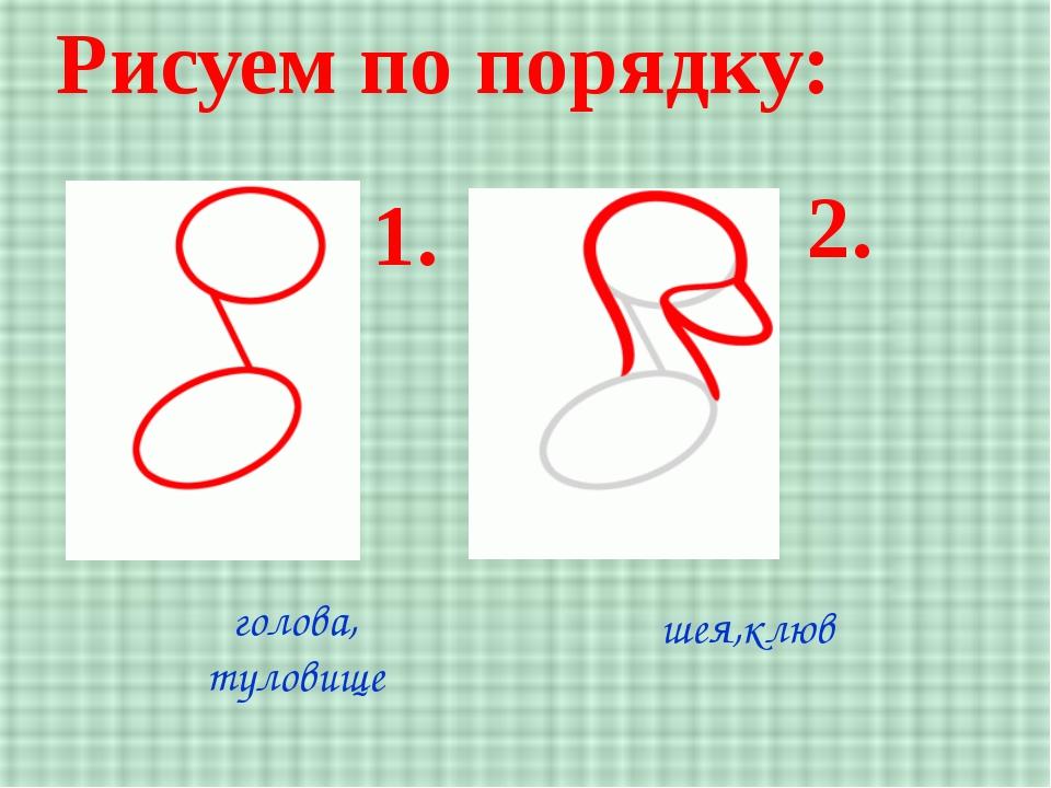 Рисуем по порядку: 1. 2. голова, туловище шея,клюв