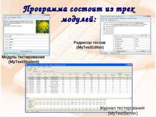Программа состоит из трех модулей: Журнал тестирования (MyTestServer) Модуль