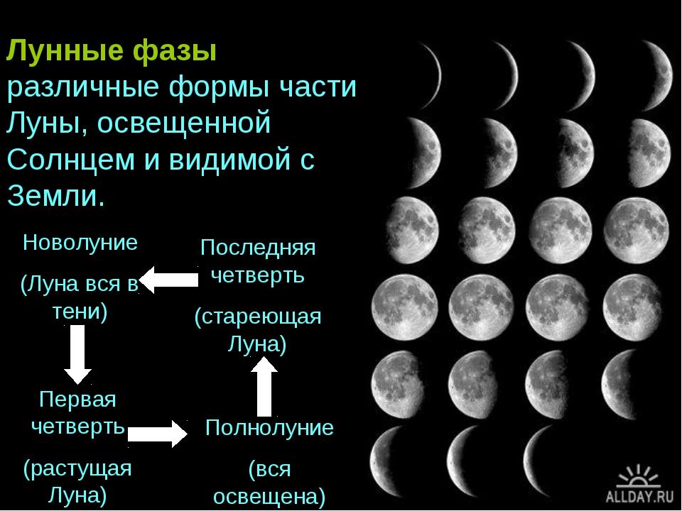 Новолуние (Луна вся в тени) Первая четверть (растущая Луна) Полнолуние (вся о...