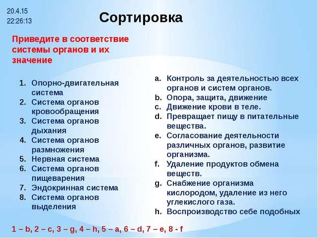 Сортировка Опорно-двигательная система Система органов кровообращения Систем...