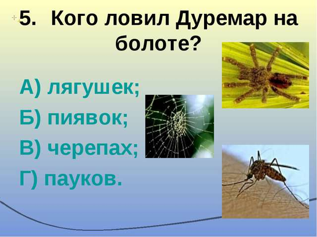 5.Кого ловил Дуремар на болоте? А) лягушек; Б) пиявок; В) черепах; Г) пауков.