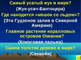 Самый усатый жук в мире? (Жук-усач-Бантоцера) Где находится «мешок со льдом»?