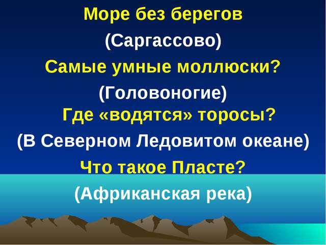 Море без берегов (Саргассово) Самые умные моллюски? (Головоногие) Где «водятс...