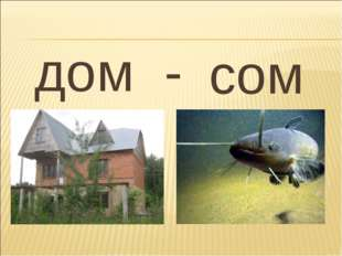 дом - сом
