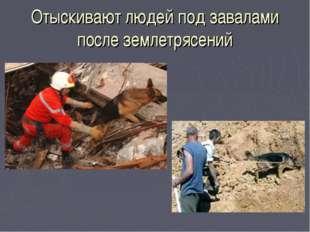Отыскивают людей под завалами после землетрясений
