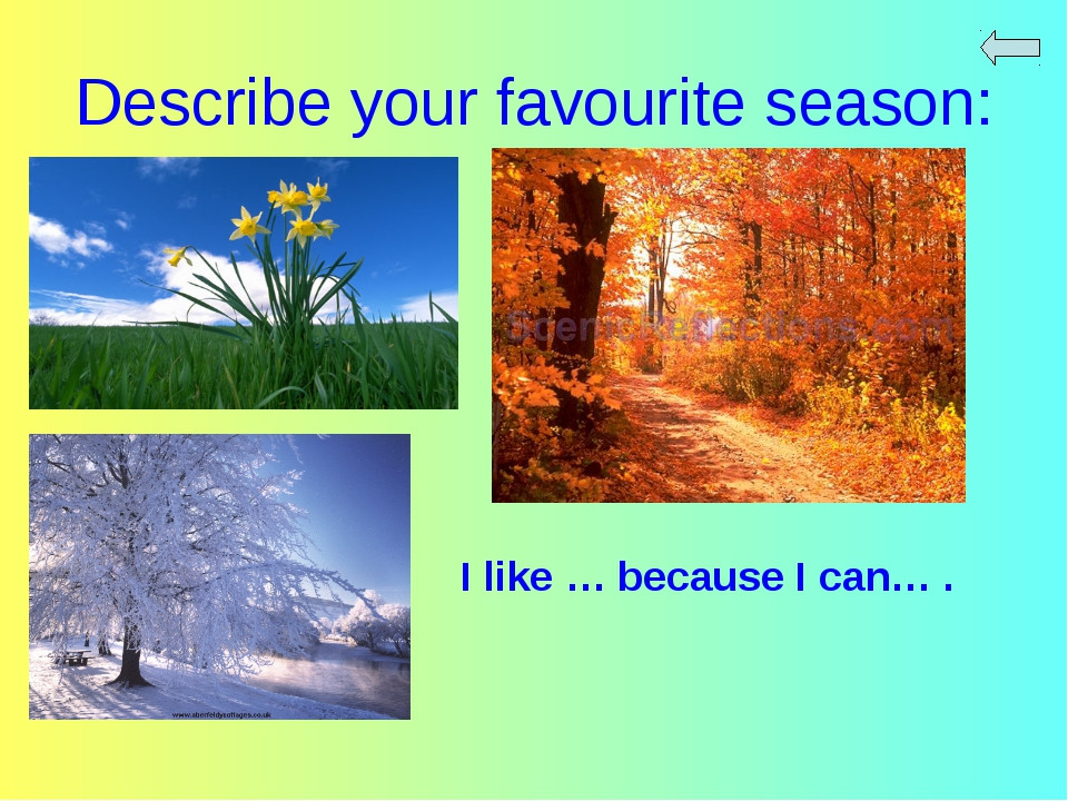 Describe your favourite season: I like … because I can… .