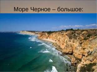 Море Черное – большое: восход соленца