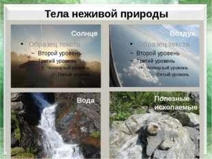 Тела неживой природы Солнце Воздух Вода Полезные ископаемые