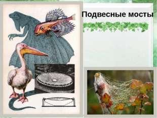 Подвесные мосты http://pics.photographer.ru/nonstop/pics/pictures/422/422917