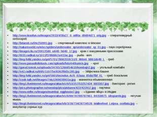 http://www.krasfun.ru/images/2013/4/5fa27_0_a6f0a_d0d04d71_orig.jpg – спирал