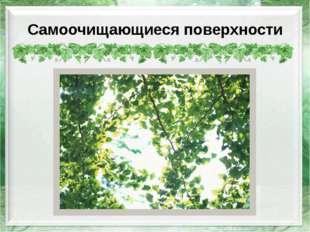 Самоочищающиеся поверхности http://resurs.ua/files/Image/tovar/26691_122_big.
