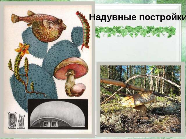 Надувные постройки http://img-fotki.yandex.ru/get/5701/78063559.51/0_966e6_b...