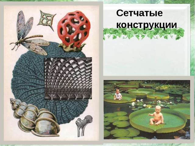 Сетчатые конструкции http://img1.liveinternet.ru/images/attach/c/0/53/257/53...