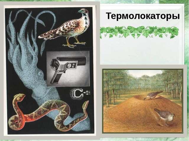 Термолокаторы http://img0.liveinternet.ru/images/attach/b/3/28/734/28734528_...