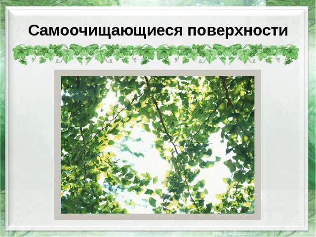 Самоочищающиеся поверхности http://resurs.ua/files/Image/tovar/26691_122_big....