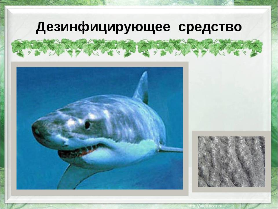 Дезинфицирующее средство http://s1.n1.by/sites/default/files/imagecache/full/...