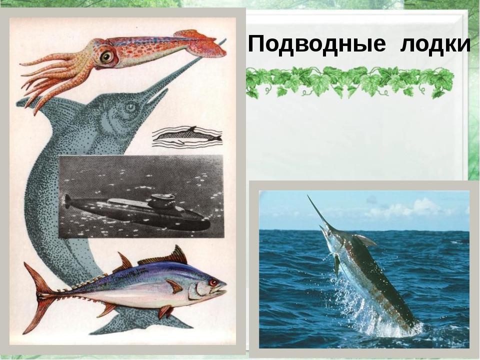 Подводные лодки http://i033.radikal.ru/1011/f2/8bbfe2a432ac.jpg – рыба - меч