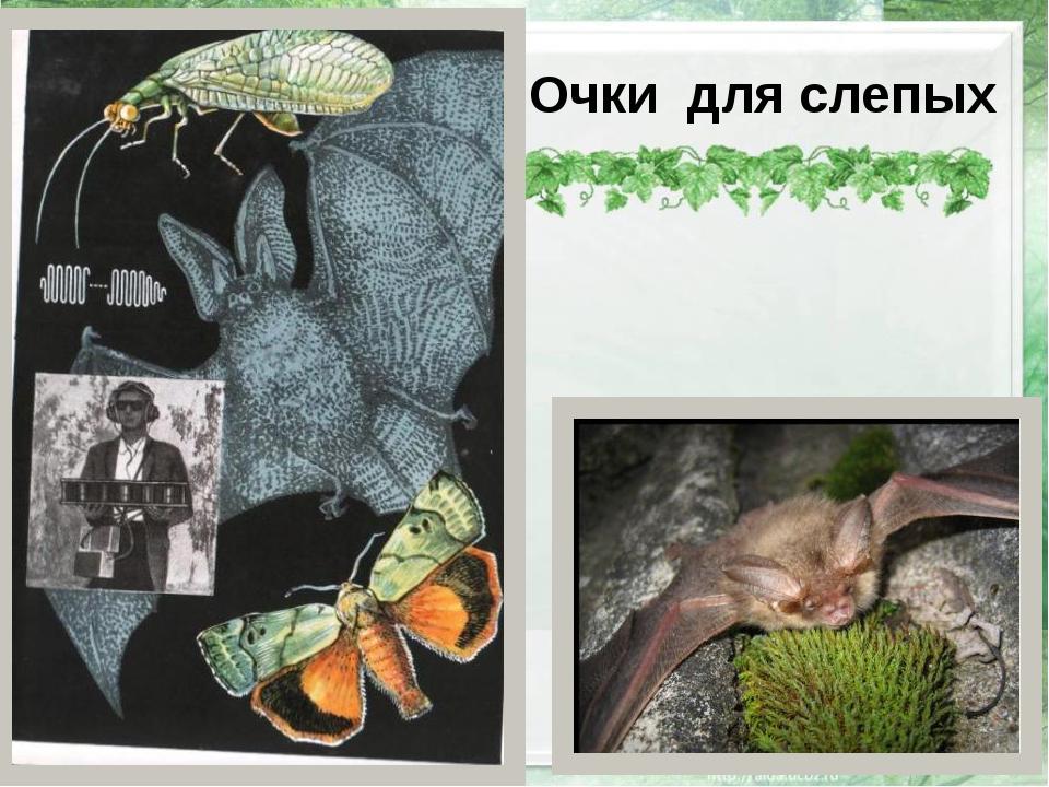 Очки для слепых http://img1.liveinternet.ru/images/attach/c/6/89/787/8978796...