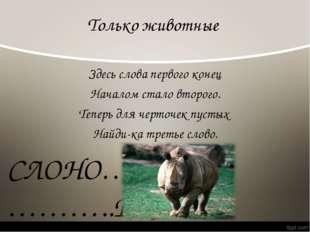 Только животные Здесь слова первого конец Началом стало второго. Теперь для ч