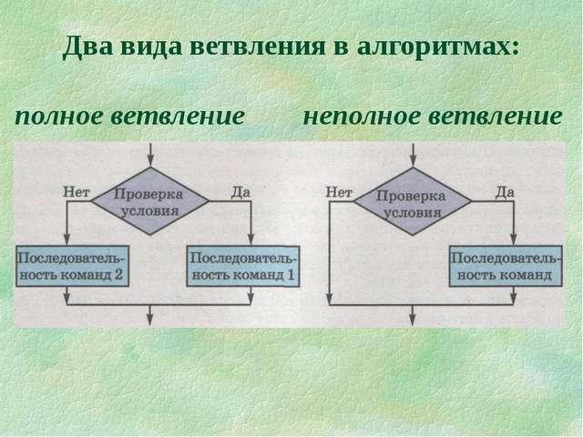 Два вида ветвления в алгоритмах: полное ветвление неполное ветвление