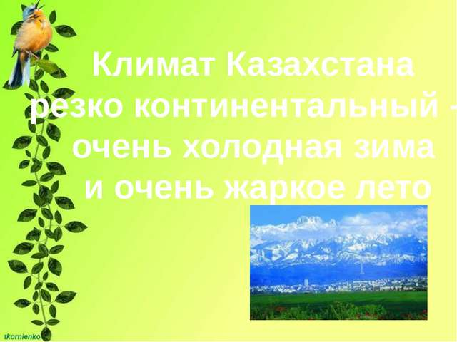 Климат Казахстана резко континентальный – очень холодная зима и очень жаркое...