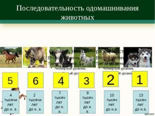 Последовательность одомашнивания животных 5 6 4 3 2 1 4 тысячи лет до н. э. 2